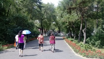 Some park near the Songhua River
