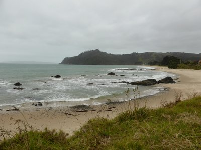 Bad weather in coromandel