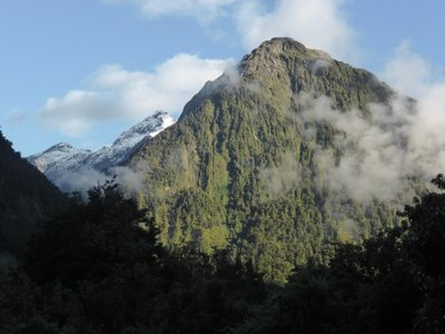 Oh that's how Milford sound looks like