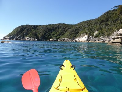 Sea kayaking in Abel Tasman marine reserve