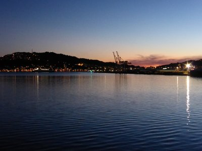 Wellington by sunset