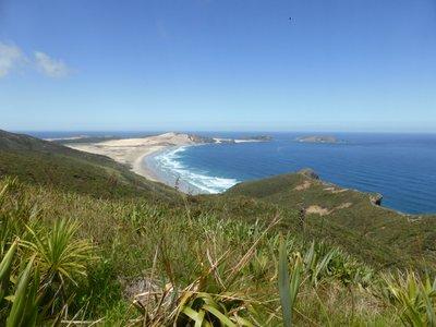 Cape Reinga view