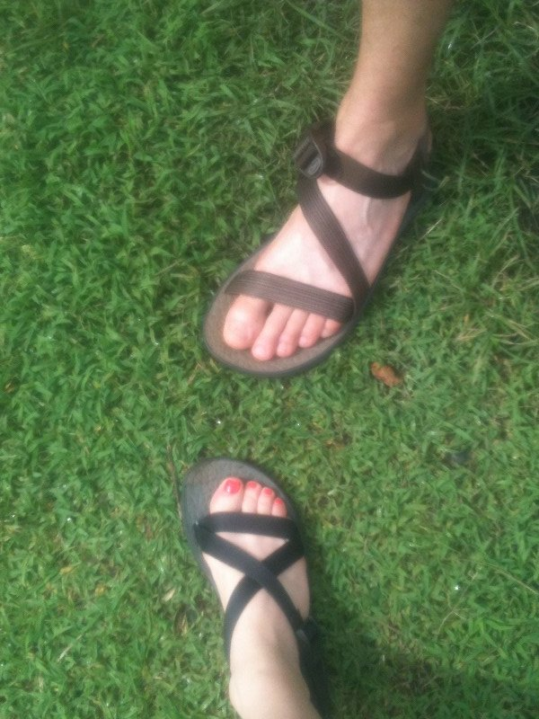 Chacos performing extremely well