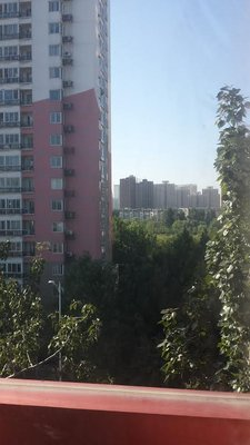china_view_from_dorm.jpg