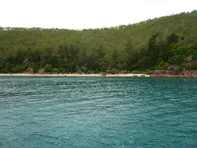 Aus - Hamilton island Snorkelling