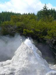 Rotorua Geyser - foaming