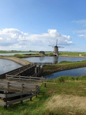 Windmill and Texel landscape