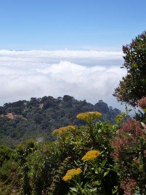 View from Irazú Volcano