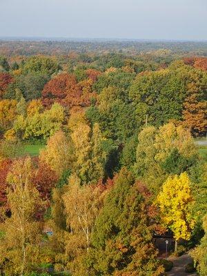 Autumn in Bad Bentheim