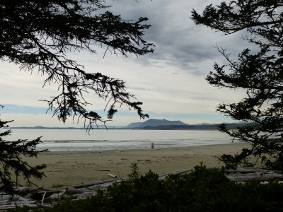 Pacific Rim National Park, Vancouver Island
