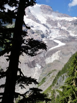 Nisqually Glacier, Mount Rainier