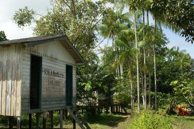 Amazonian village school