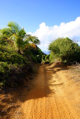 Pitcairn roads