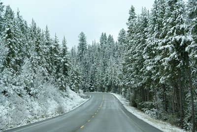 Leaving Yellowstone with a fresh layer of snow