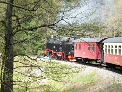 Harz Steam Train Trip