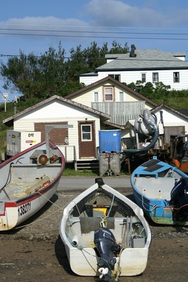 Norris Point fishing boats, Newfoundland