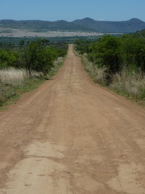 Road in Pilanesberg