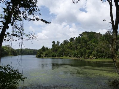 Soberanía National Park, Panama