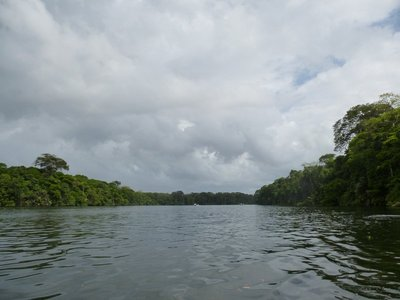Along the Tortuguero Canals