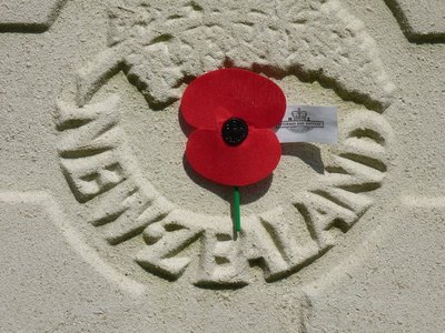 Poppy on New Zealand's Soldier Grave