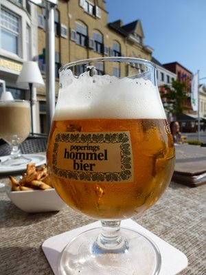 Typical Poperinge's Hommel Beer