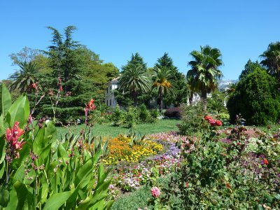 Bar gardens