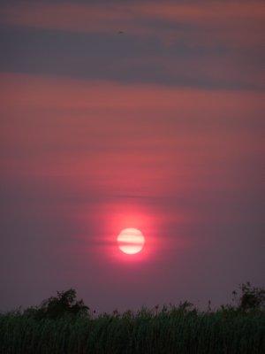 Sunset along the Chobe River, Botswana