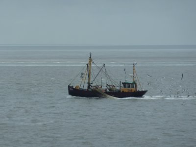 Traditional fishing boat on the Wadden Sea