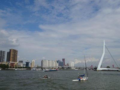 Maas River and Erasmus Bridge