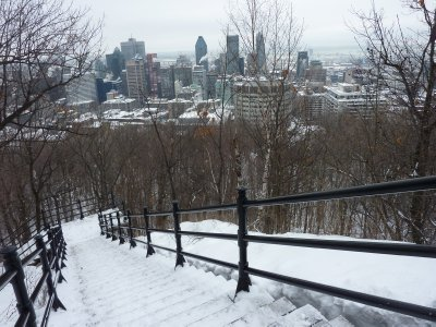 Mont-Royal view