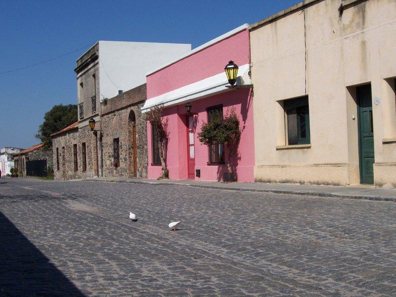 Colourful Colonia