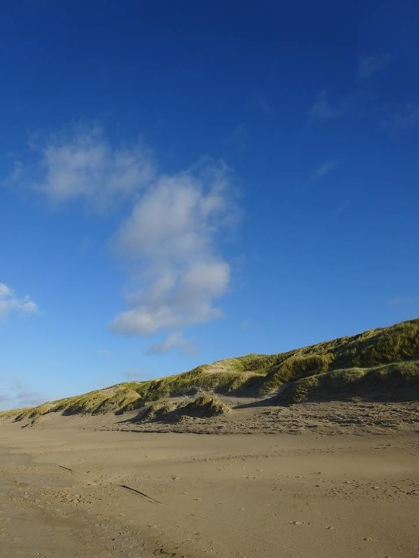 Castricum Beach and Dunes