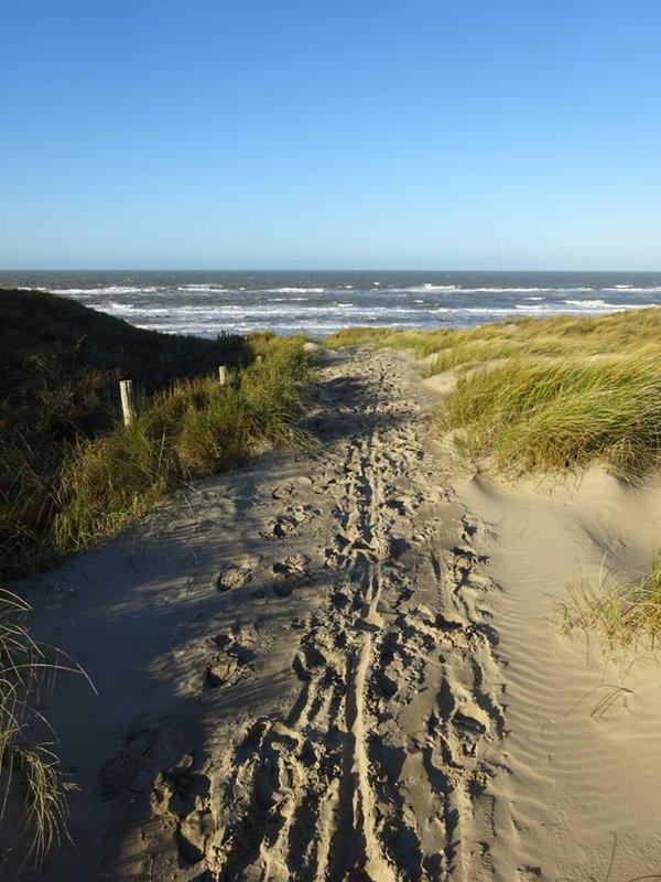 Castricum Beach