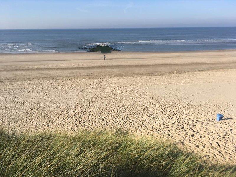 Beach at Schoorl