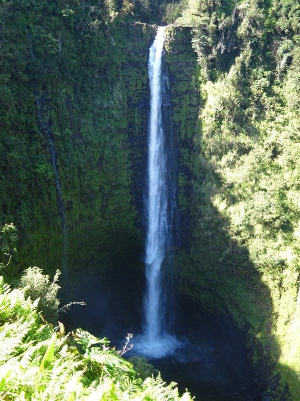 Akaka Falls, Big Island Hawaii
