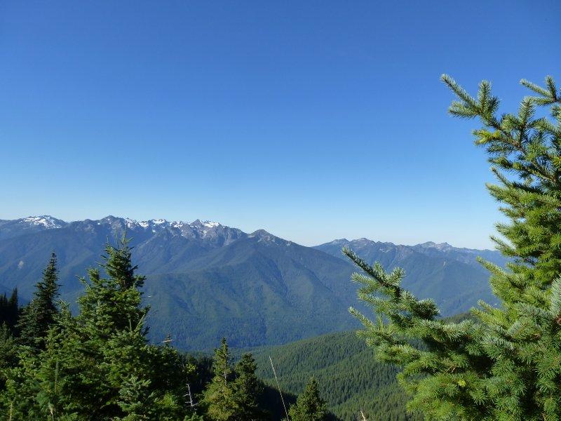 Olympic National Park, Washington State, USA