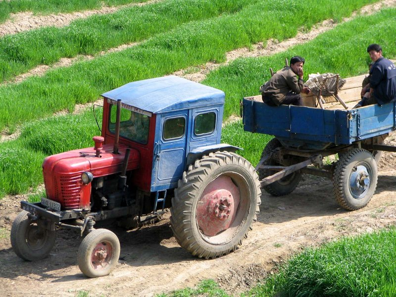 North Korean farmers