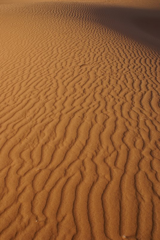 Desert detail, Erg Chigaga
