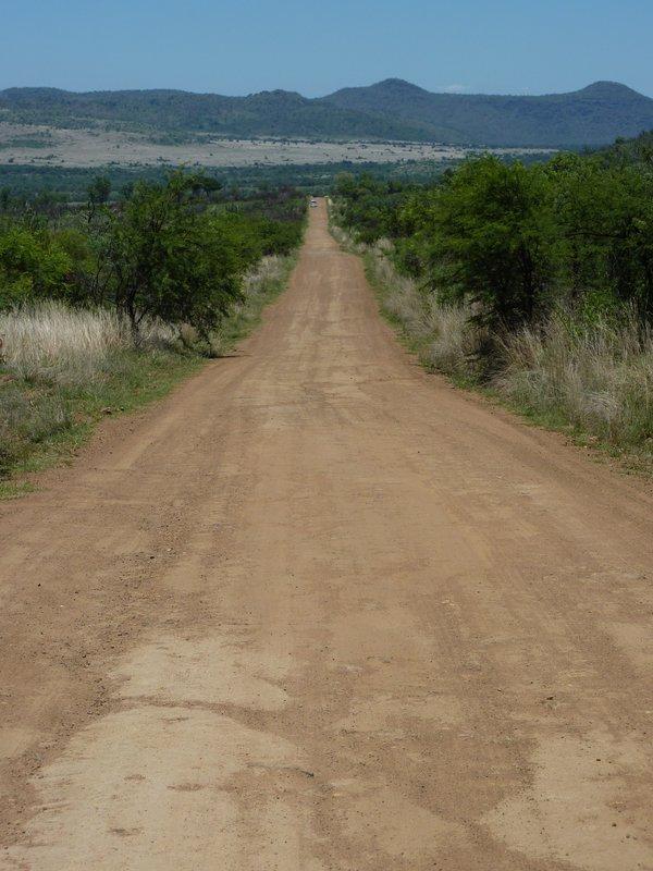 Road in Pilanesberg