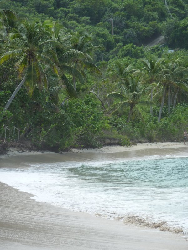 Beach at Smuggler's Cove, Tortola