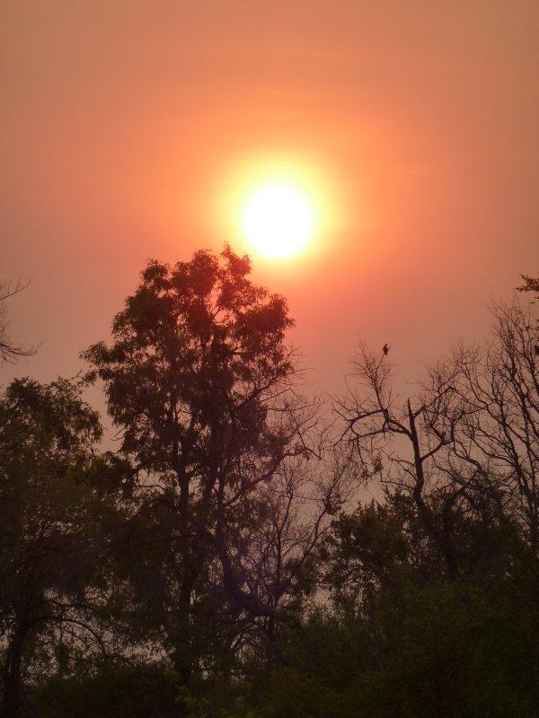 African Sunset, Zimbabwe