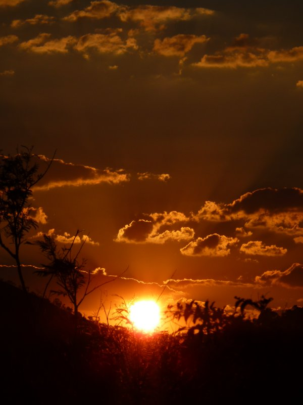 Pilanesberg Sunset