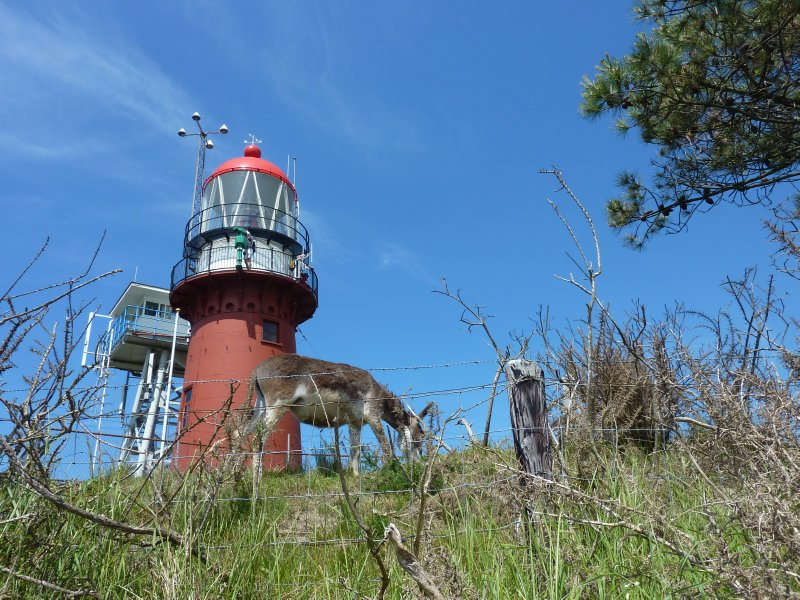Vlieland's Lighthouse