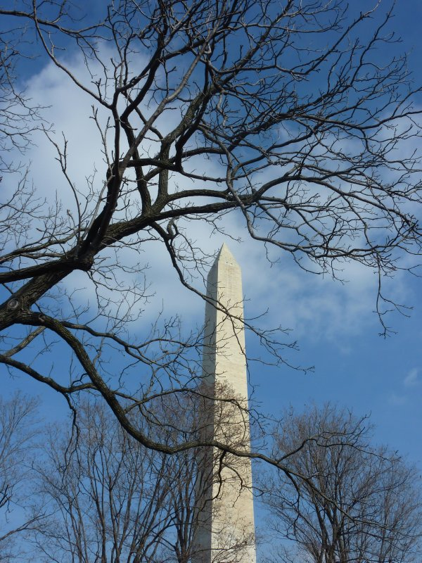 The National Monument, D.C.