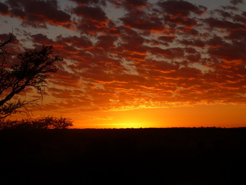 Sunrise at Kalahari Tented Camp