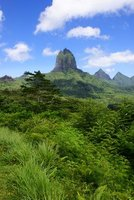Lush and green Moorea