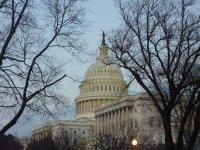 The Capitol, D.C.