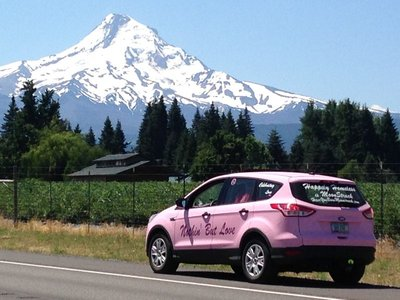 PinkMagic and Mt Hood