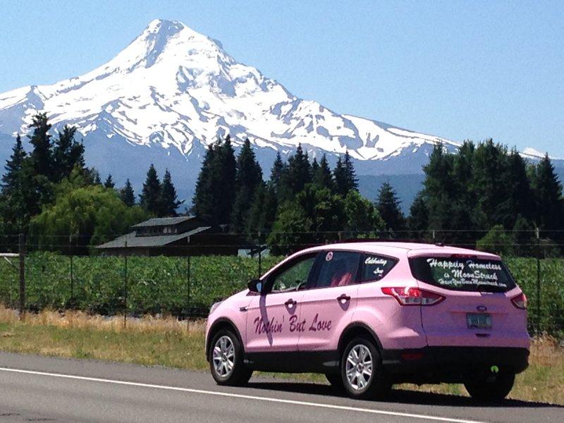 PinkMagic and Mt Hood