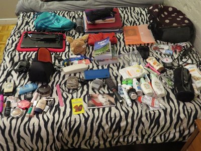 The non-clothes items I packed.